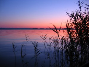 Best Tweets 112511 Lake Sunrise
