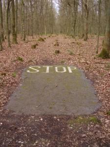 Stop. Rest. Restore.