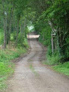 Best Tweets 083112 Long Winding Road